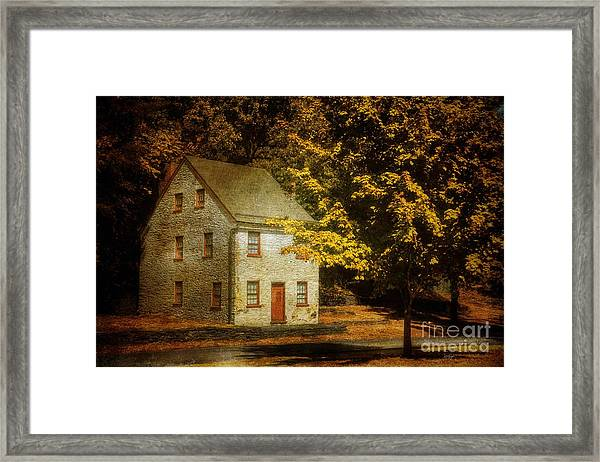 As The World Passes By Framed Print