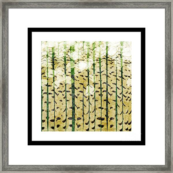 Aspen Colorado Abstract Square 3 Framed Print
