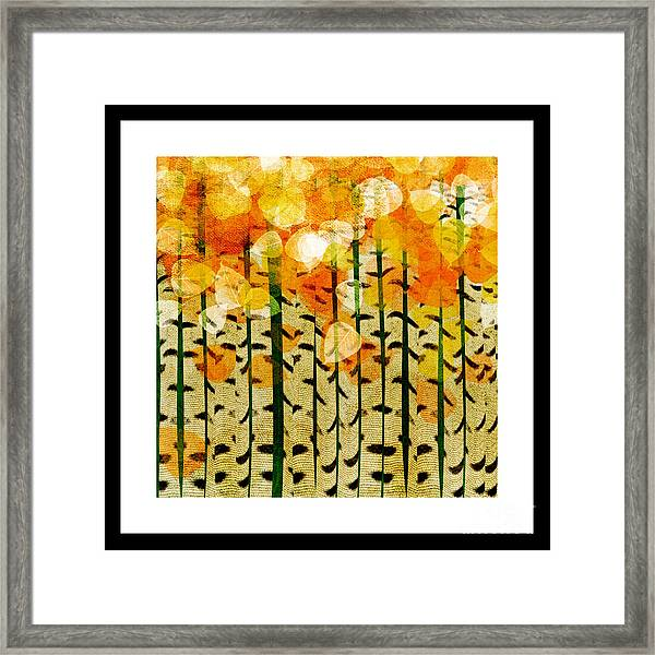 Aspen Colorado Abstract Square 4 Framed Print