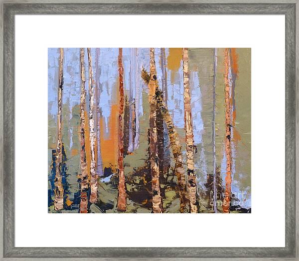 Aspen Forest Colorado Framed Print