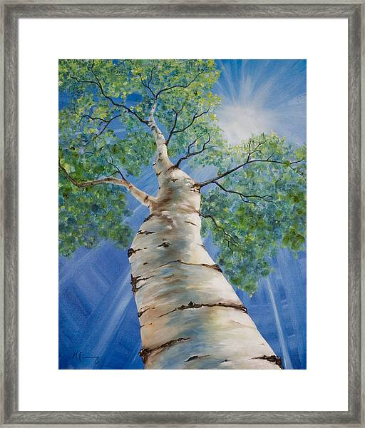 Aspen Light Framed Print