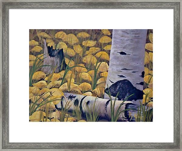 Aspen-ness Framed Print