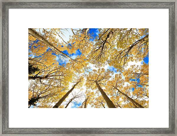 Aspen Sky Framed Print by Robert Yone