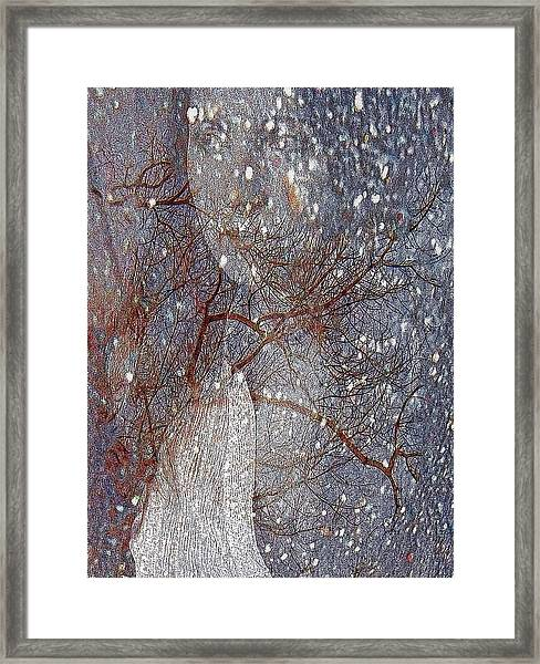 Asphalt - Portrait Of A Lady Framed Print