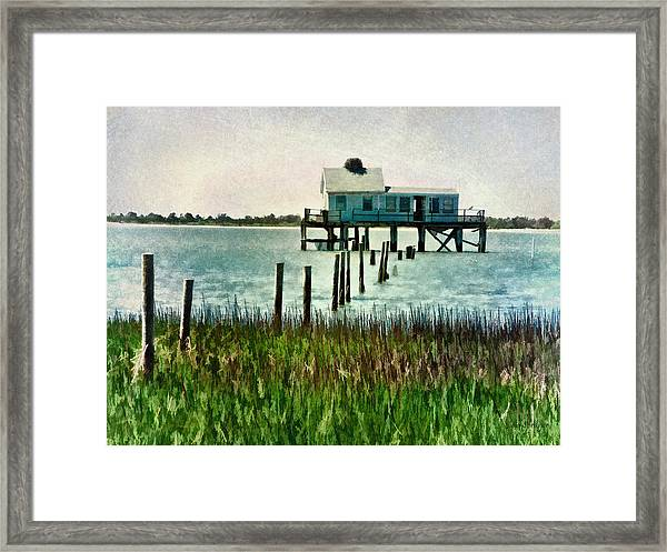 Assateague Abandon Framed Print