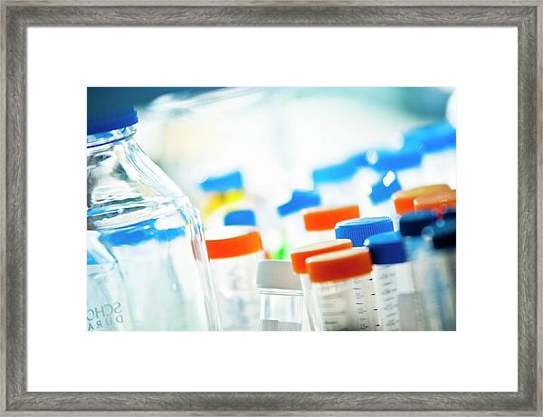 Assorted Glassware In A Laboratory Framed Print by Dan Dunkley/science Photo Library