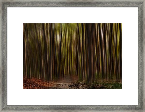 Astray- Walking Path Art Framed Print