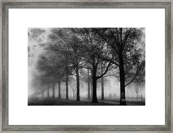 At Rest Framed Print