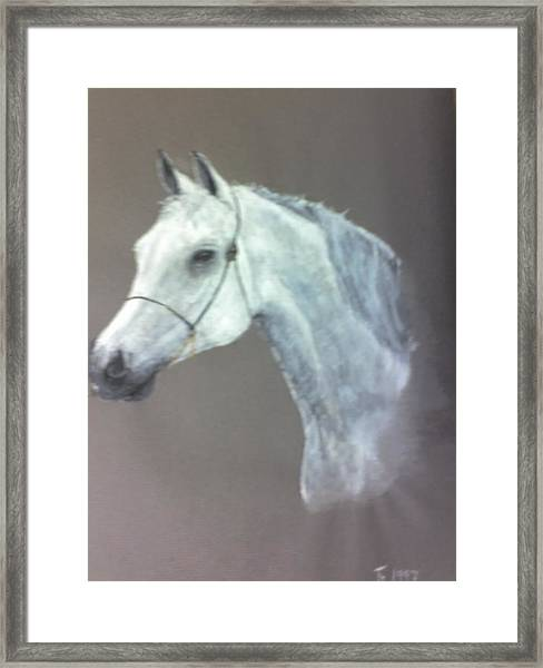 At Stud Framed Print by Stephen Thomson