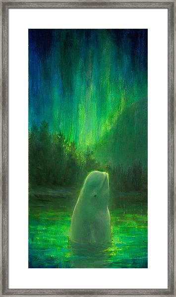 Aurora Beluga Framed Print