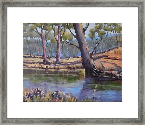 Aussie Billabong Framed Print