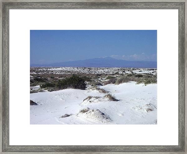 Austere Landscape  Framed Print