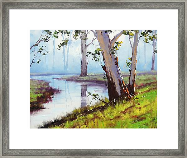 Australian Trees Painting Framed Print