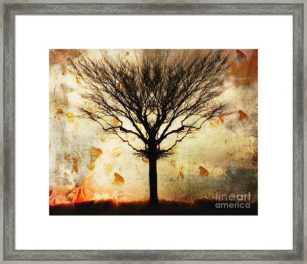 Autum Wind Framed Print