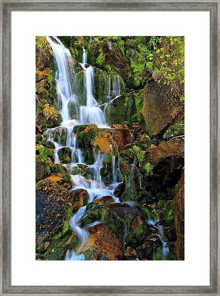 Autumn Along Summit Creek Framed Print