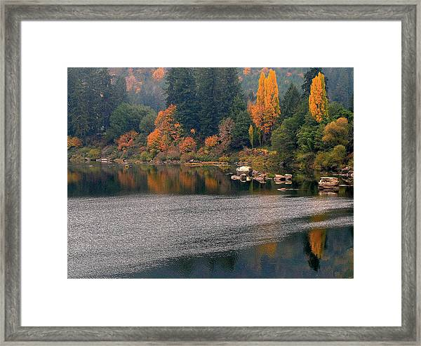 Autumn Along The Umpqua Framed Print