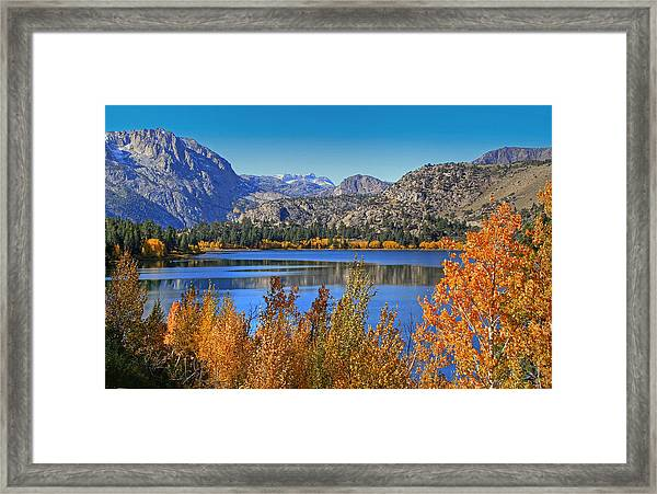 Autumn At June Lake Framed Print