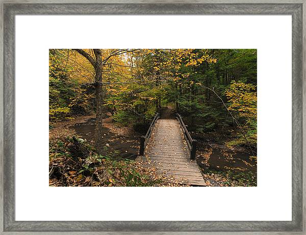 Autumn Bridges. Framed Print