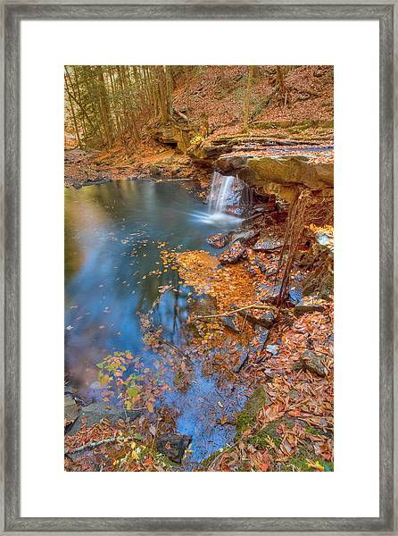 Autumn Color In Pond Framed Print