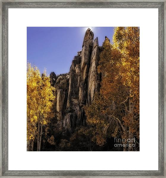 Autumn Colors Framed Print by Nancy Marie Ricketts