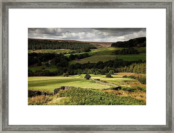 Autumn Colours In The North Yorkshire Framed Print by Dan Kitwood