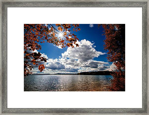 Framed Print featuring the photograph Autumn  Confidential  by Bob Orsillo