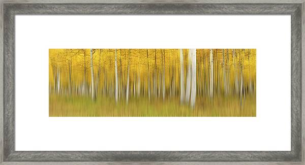 Autumn Dream Framed Print by Mei Xu