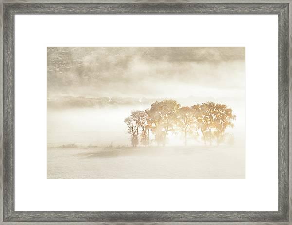 Autumn Dreams Framed Print by John Fan