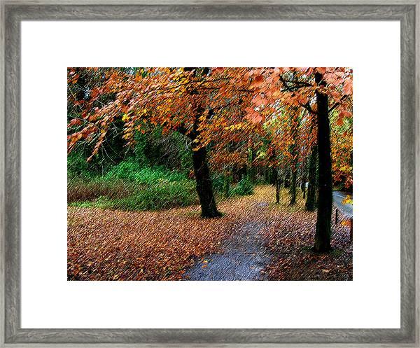 Autumn Entrance To Muckross House Killarney Framed Print