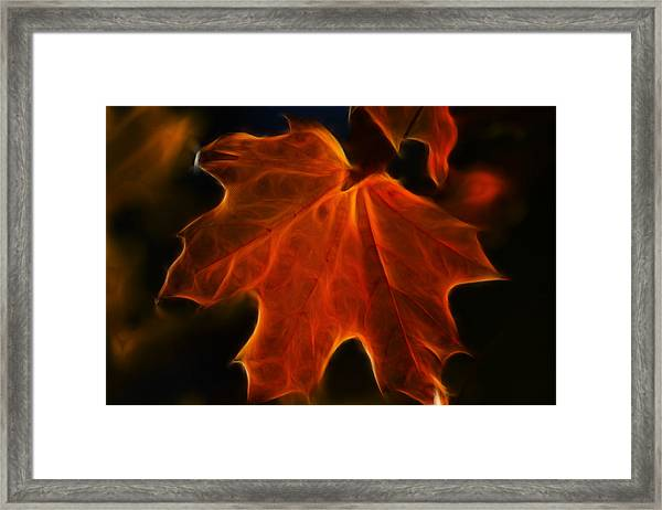 Framed Print featuring the photograph Autumn Fire by Beth Sawickie