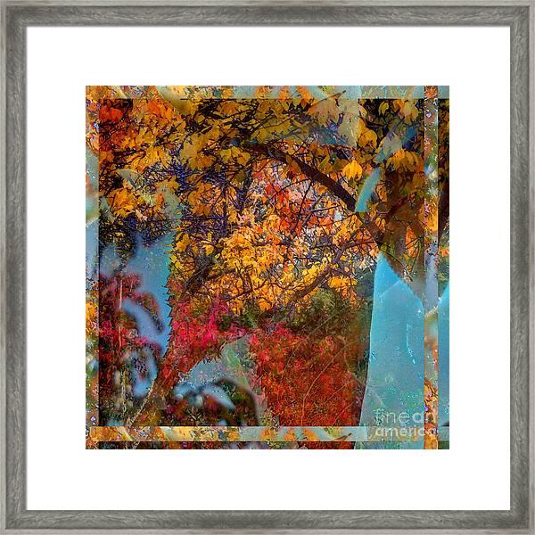 Autumn Fusion 5 Framed Print