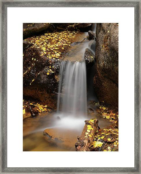 Autumn Gold And Waterfall Framed Print
