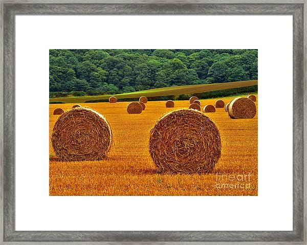 Autumn Hay Bales Framed Print