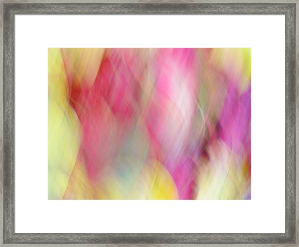 Autumn Haze Framed Print