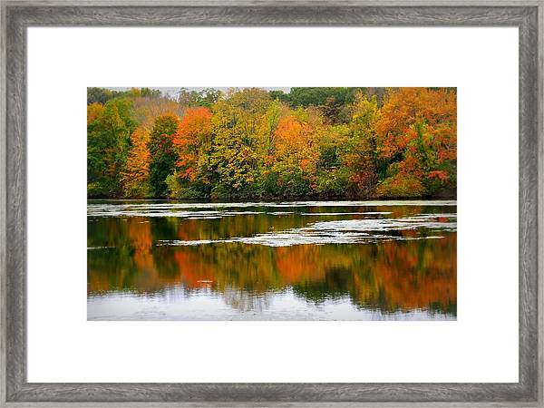 Autumn I Say Framed Print