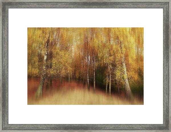 Autumn Impression Framed Print
