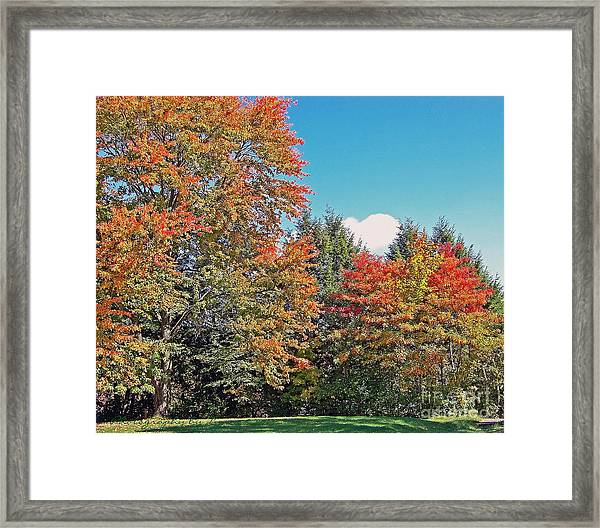 Ohio Autumn In Full Color Framed Print