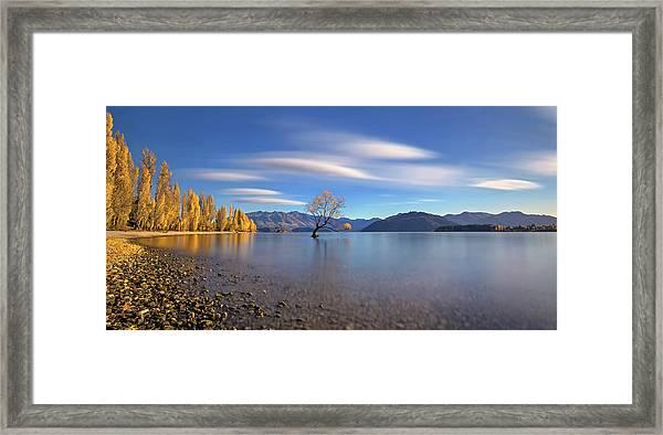 Autumn In Lake Wanaka Framed Print by Hua Zhu