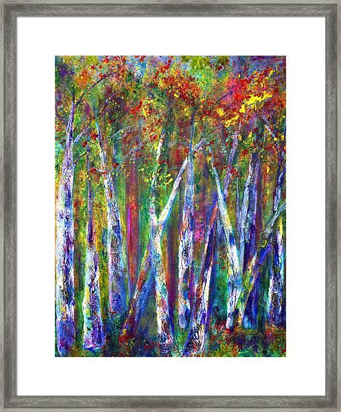 Autumn In Muskoka Framed Print