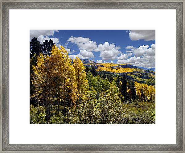 Autumn In New Mexico Framed Print