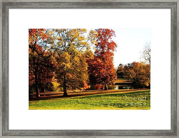 Autumn In The Air... Framed Print by Jinx Farmer