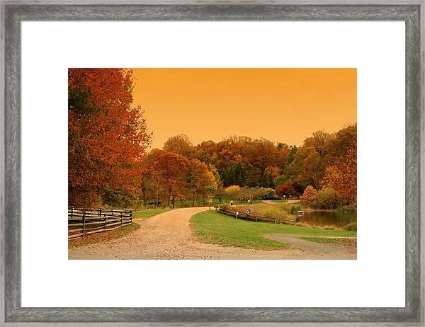 Autumn In The Park - Holmdel Park Framed Print