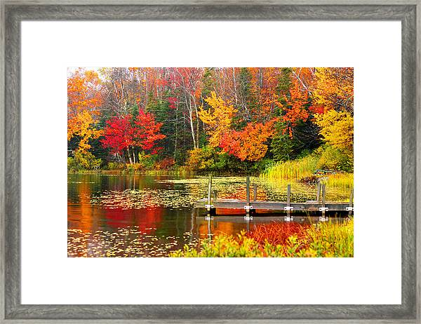 Autumn In Vt Framed Print