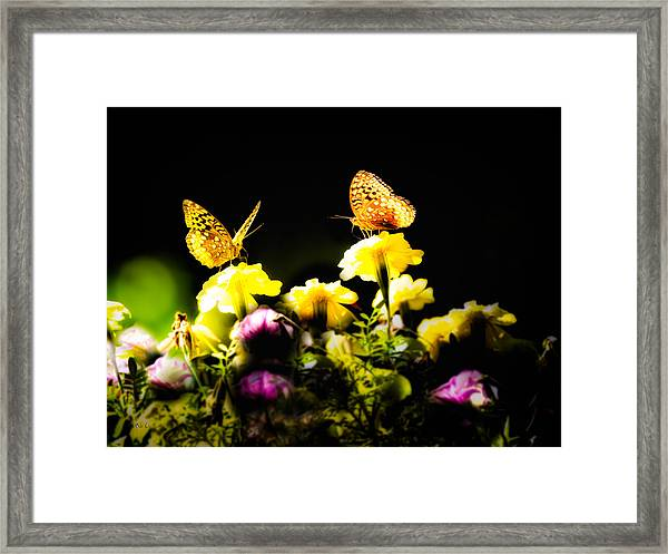Framed Print featuring the photograph Autumn Is When We First Met by Bob Orsillo