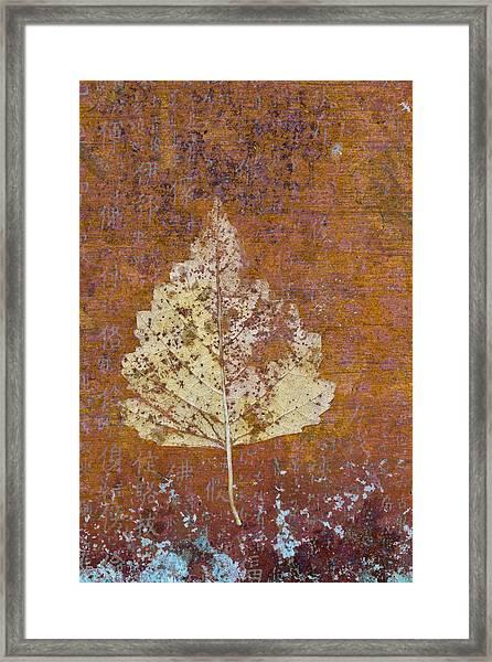 Autumn Leaf On Copper Framed Print