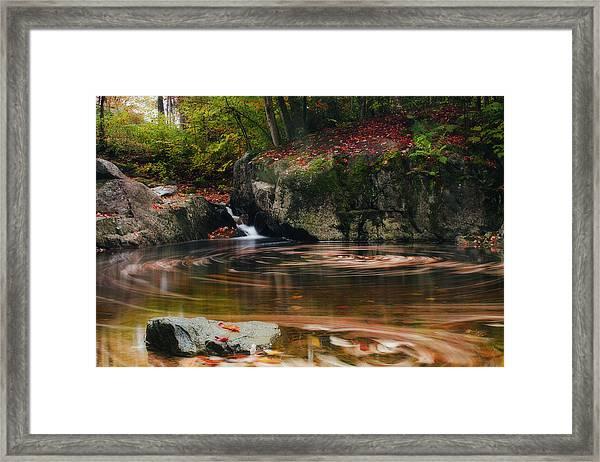 Autumn Leaf Trails Framed Print