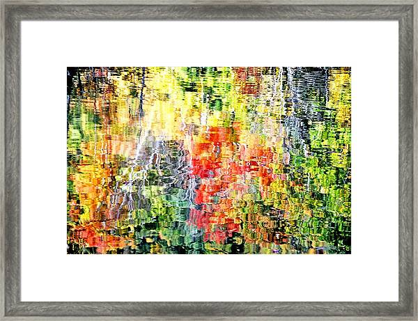 Autumn Leaves Reflected In Pond Surface Framed Print