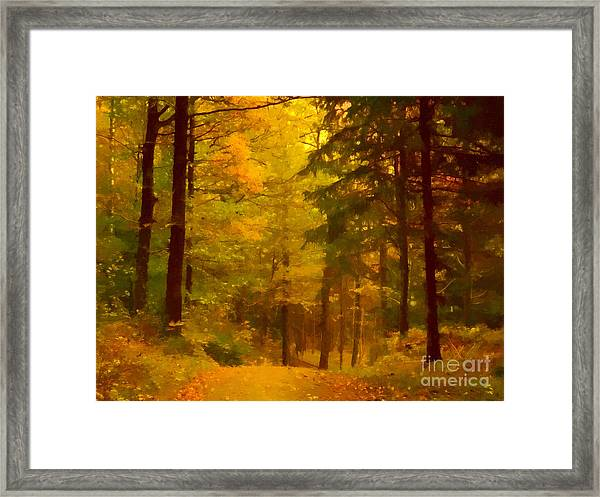 Autumn Lights Framed Print by Lutz Baar