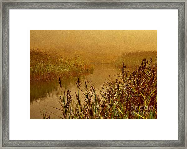 Autumn Mist Framed Print