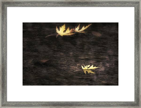 Autumn Mood - Fall - Leaves Framed Print